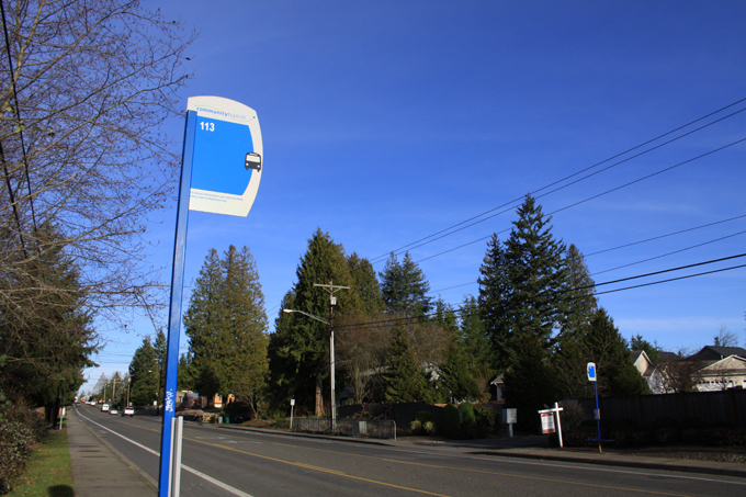 Bus Stop, Lake Serene